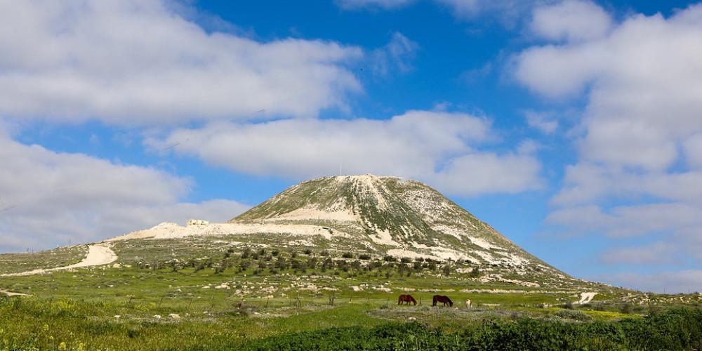 Mountain, Palestine State