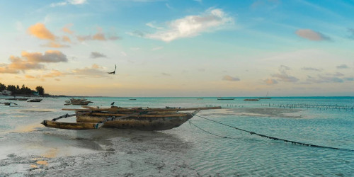 10 reasons why you should travel to Zanzibar instead of Dar es Salaam