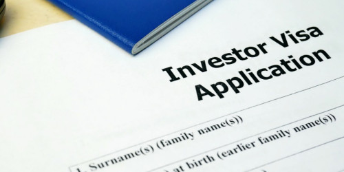 How to get a US investor visa?