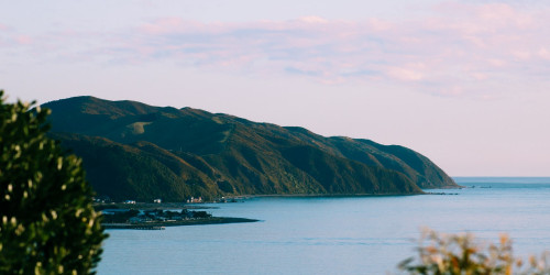 10 reasons why you should travel to Wellington instead of Auckland