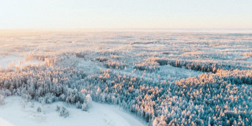 10 Instagrammable places in Rovaniemi