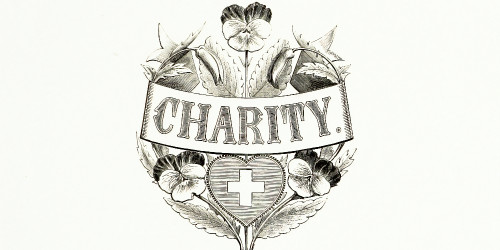 The best charities in the world