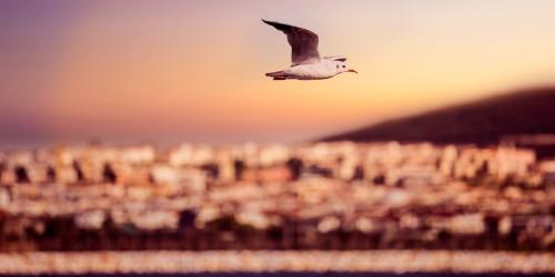 12 Instagrammable places in Izmir
