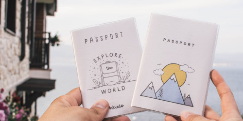 The most powerful passport in the world