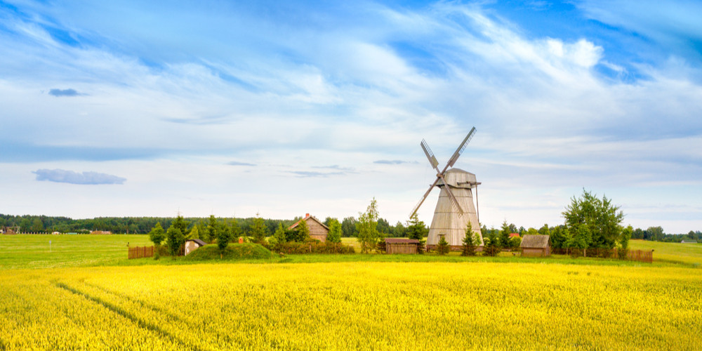 Wooden windmill in the background field and sky