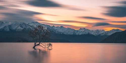 15 tips to travel New Zealand on a budget in 2021