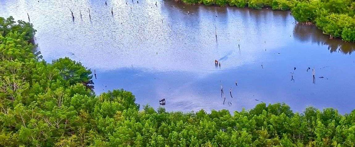 Parc national d'Akanda