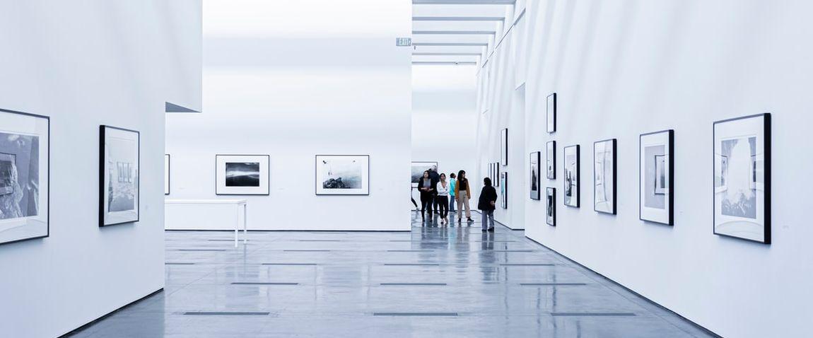 art gallery y