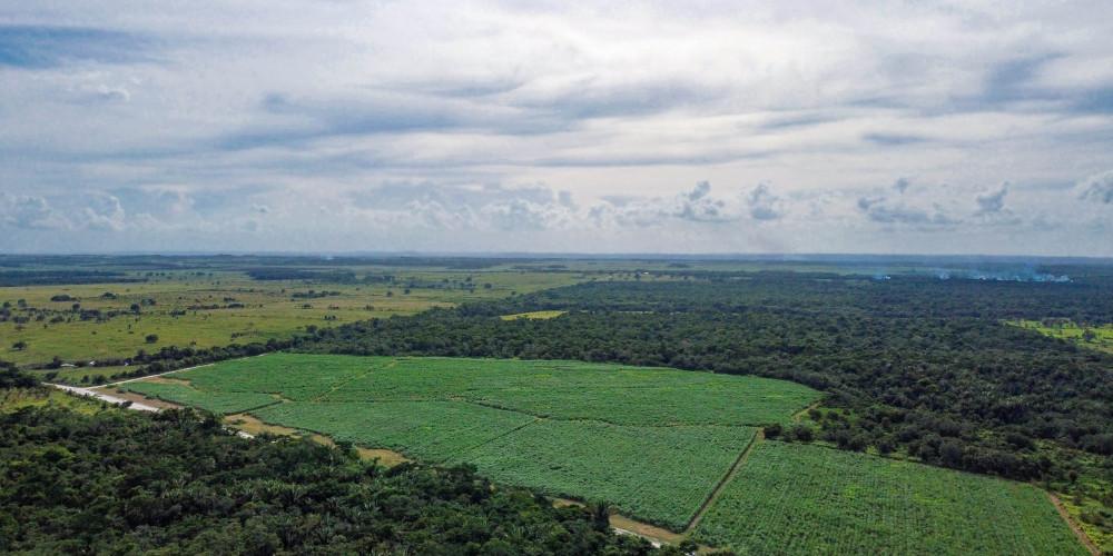 Nature of Guinea-Bissau