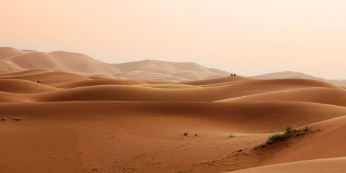 Walking across the Gobi Desert