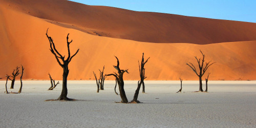 10 things I wish I knew before going to Namibia