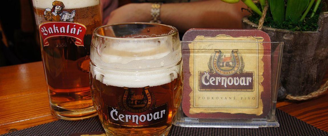 cernovar beer