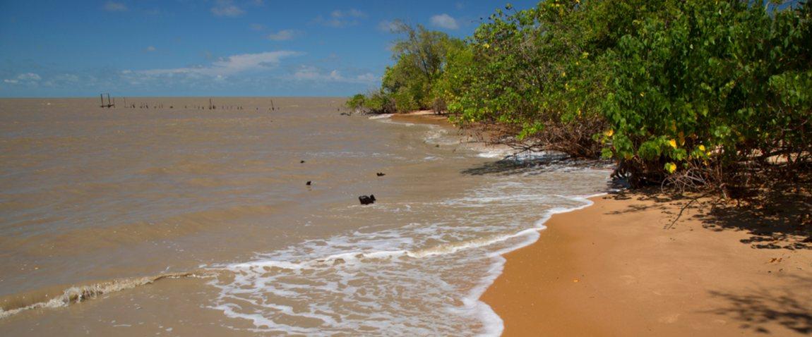 coast line of suriname