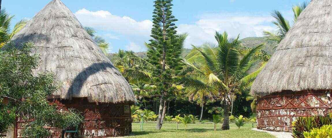 coconut straw