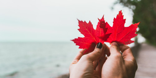 Canada Spouse Visa Guidance