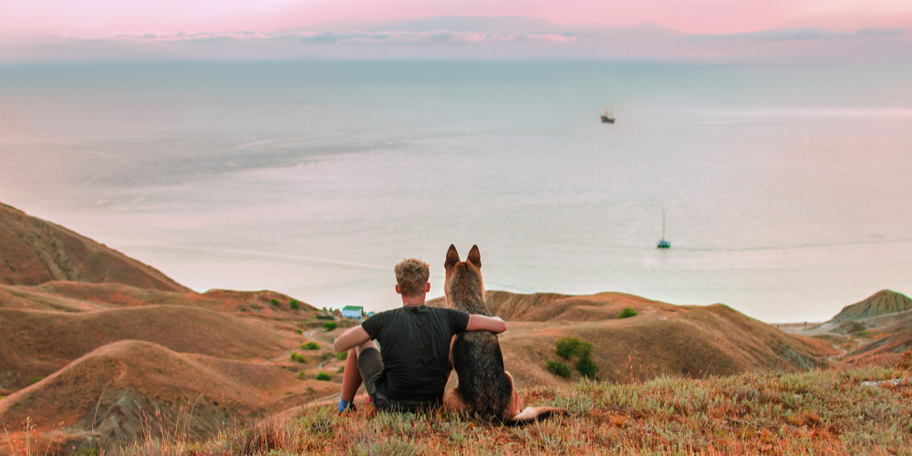 Owner and dog is sitting in the mountains