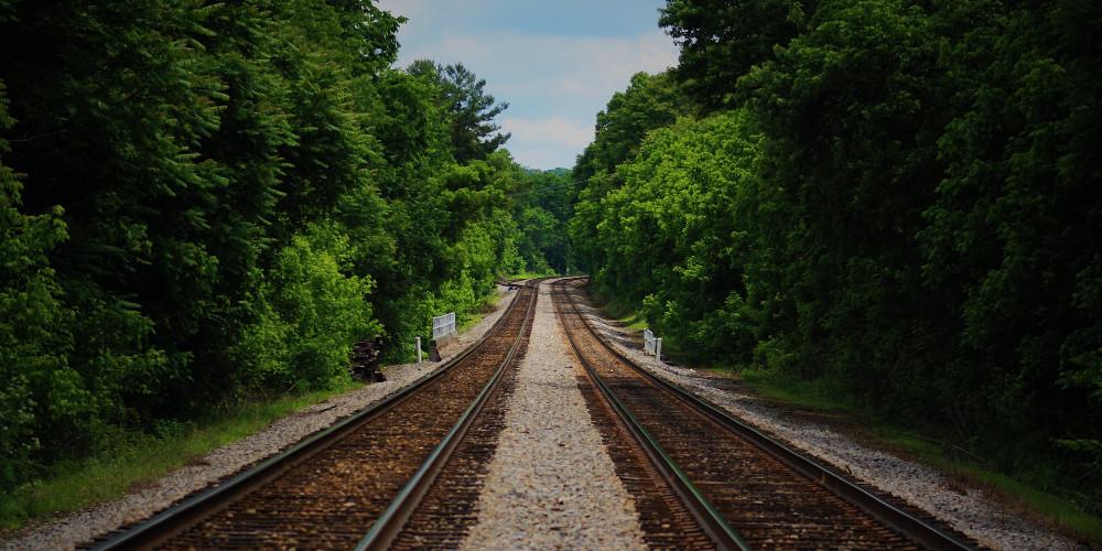 Brown train railway between green trees