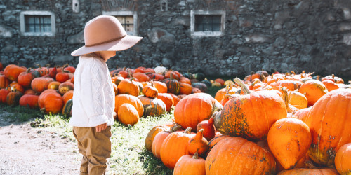 Top 10 places to visit for Halloween