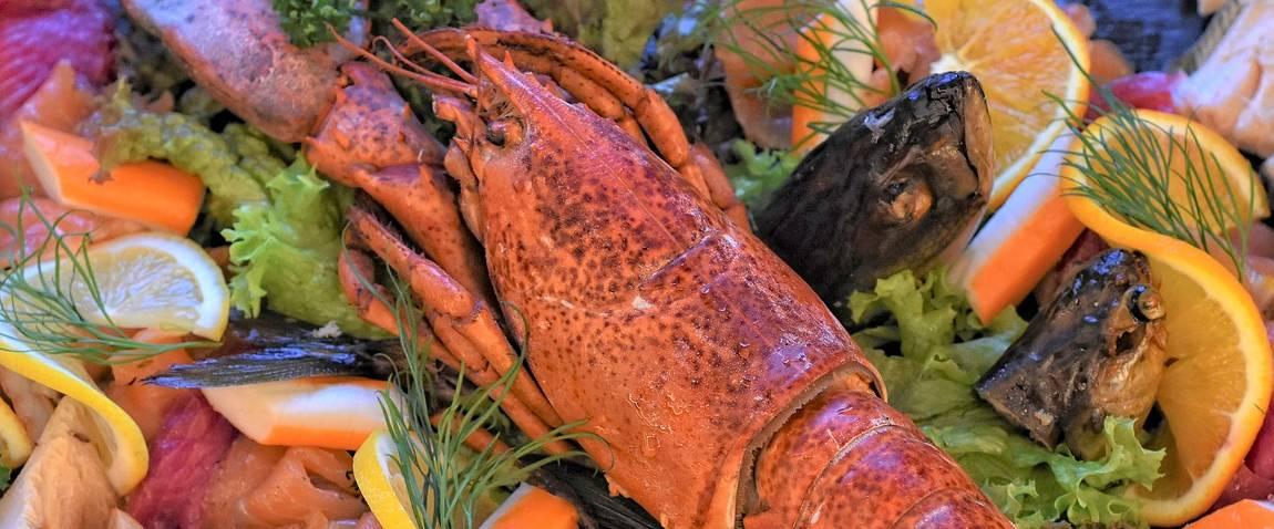 lobster cuisine