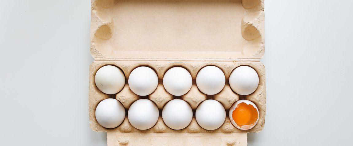 lots of eggs