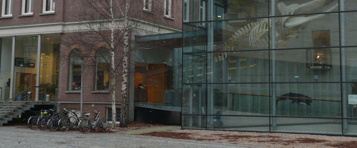 museum in rotterdam