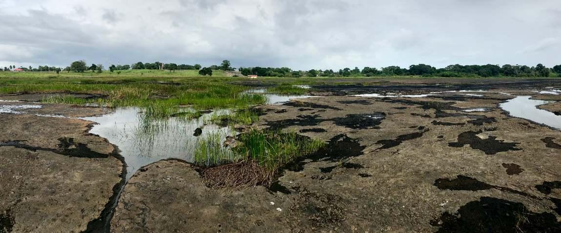 la brea pitch lake