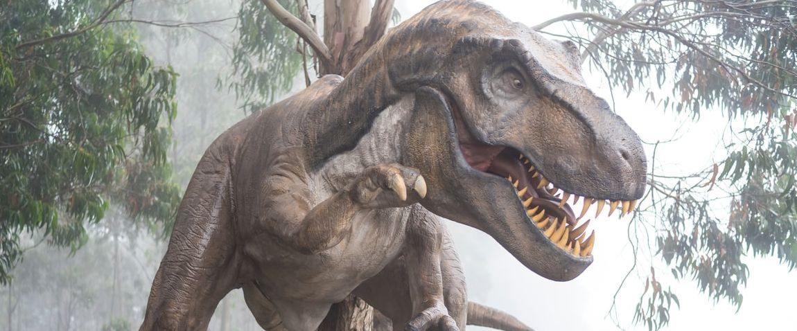 nature dinosaur