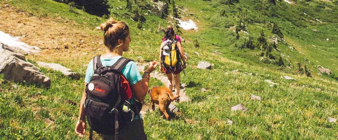 hiking trail in san diego