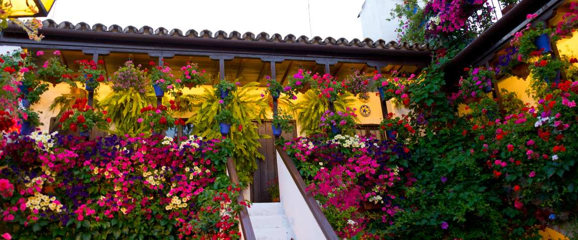 traditional flower decorated patio
