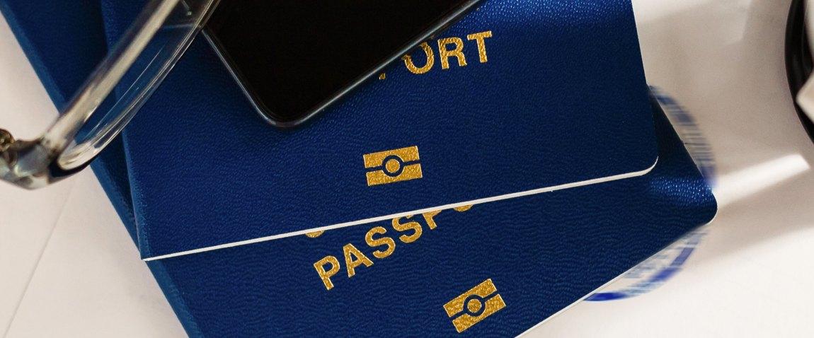 viza i pasport s otkaznim shtampom