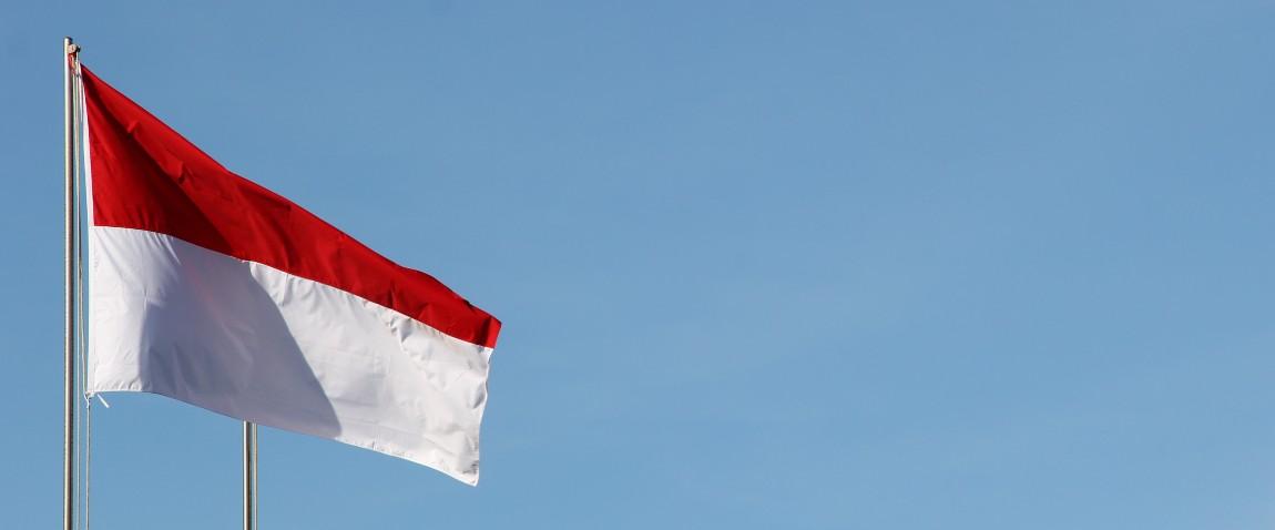 viza indonezii po pribitiu