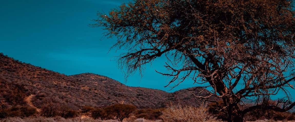 windhoek desert